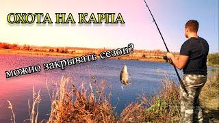 "РЫБАЛКА НА ""РЫБХОЗЕ"", ОСЕННИЙ КЛЁВ КАРПА, (спускают пруды, перекармливают рыбу)."