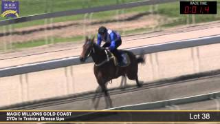 Lot 38 - 2YOs in Training Breezeup Thumbnail