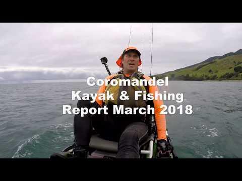 Coromandel Kayak Fishing Report - Vlog 3
