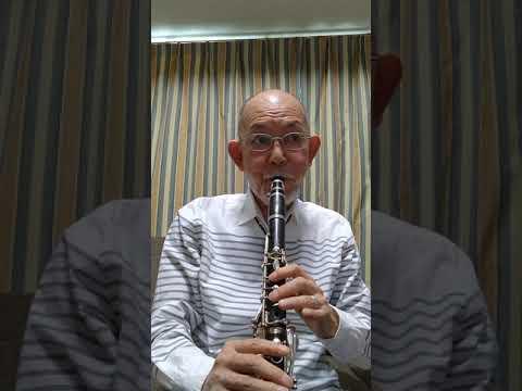 ふるさとはアジア on.clarinet 作曲:柴田容子 Special Thanks 近藤直弥 安藤浩二 (Facebookもご覧下さいネ)❕