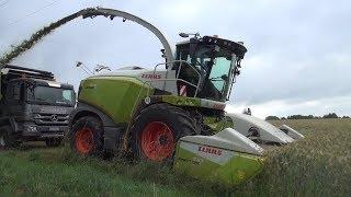 Claas Jaguar 970 rast durchs Getreide - GPS häckseln mit dem LU Spitzner