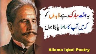 Best Allama Iqbal Urdu poetry | Allama iqbal poetry Collection | Allama iqbal urdu shayari