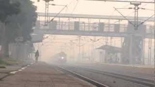 Winter Delight!! WAP5 Mumbai Rajdhani suckerpunches Fog and tears Hodal..