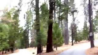 Gold Country Campground Resort Tour