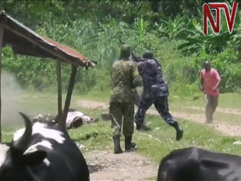 Police shoots 6 dead in Kasese clashes