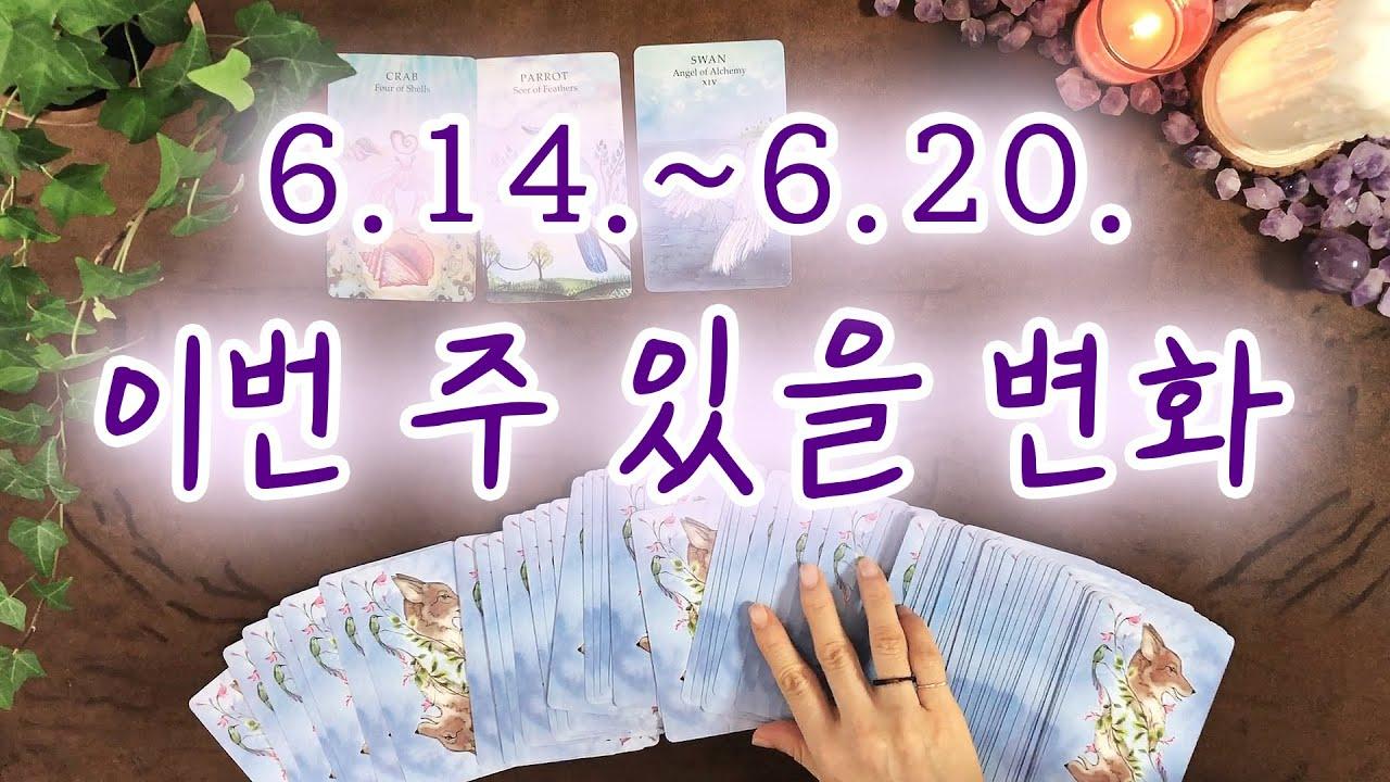 [타로/주간운] 6월 셋째주 내게 있을 변화 (6. 14.~6. 20.)