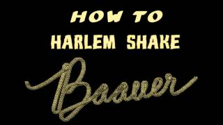Baauer - Harlem Shake [Official version HD]