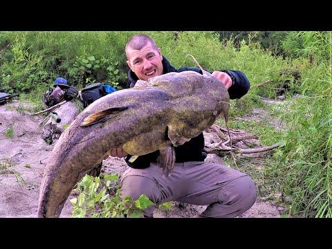 Fishing On An Island For GIANT Flathead Catfish!!!
