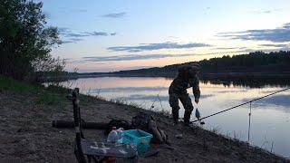 Рыбалка на донку с берега 2020 Река Вычегда