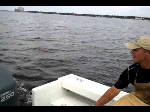 Crabbing on the Caloosahatchee River