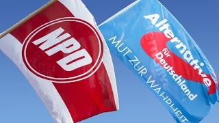 Download Video NPD und AfD: Original und Kopie?  | Panorama | NDR MP3 3GP MP4