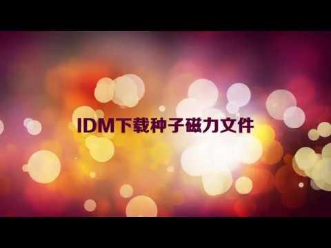 IDM下载种子磁力文件