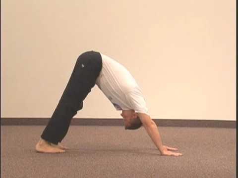 "simple yoga pose chakra 4 asana 7 ""alternating up/down"