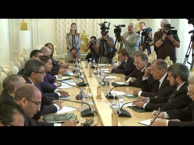Переговоры С.Лаврова и С.Шукри