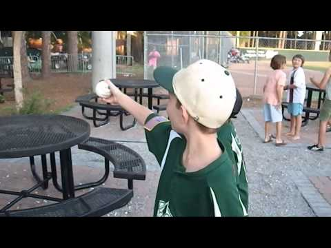 Matt's Quest - Savannah Sand Gnats