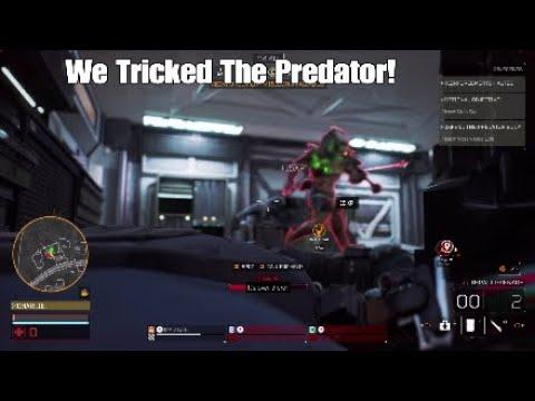 We Tricked The Predator!    Predator Hunting Grounds |