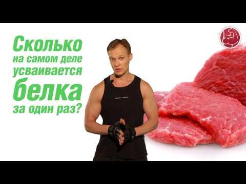 За сколько переваривается пища в желудке