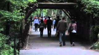 New York city - 10 best places of the BIG apple(360p_H.264-AAC)