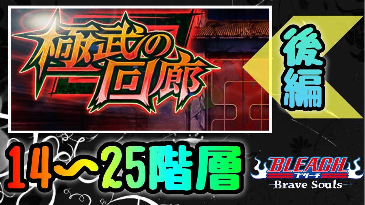 【ブレソル vol.253】極武の回廊 14〜25階層 クリア例!