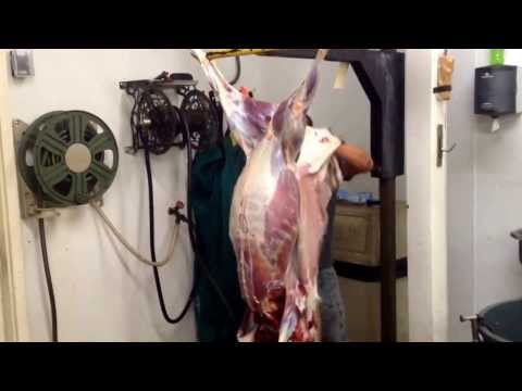 Peach Orchard Deer Processing-David Skinning a deer in under two minutes!!