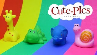 Learning Video for Colors with cute animals