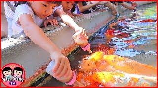 หนูยิ้มหนูแย้ม   ป้อนนมปลา เที่ยวเชียงใหม่ Chiangmai Zoo Aquarium