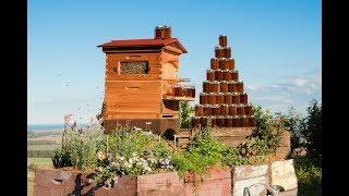 Революционный пчелиный улей Flow Hive | Новинки Наука и техника