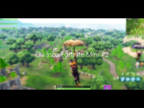 Fortnite Mini by Zom