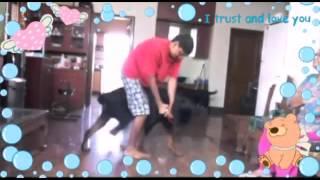 Rottweiler aggression control