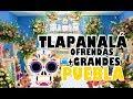 Video de Tlapanalá