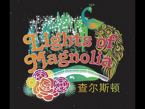 All Things Charleston - Lights of Magnolia