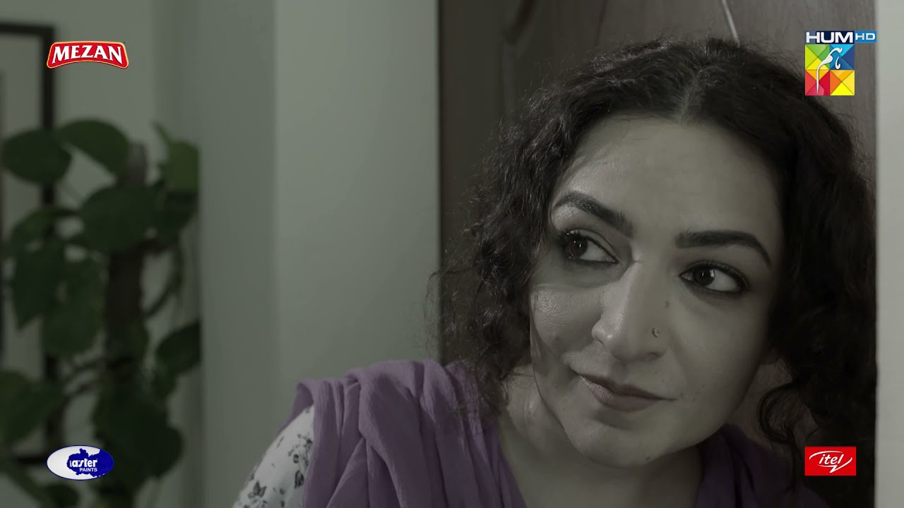 Mehreen Ke Elawah Kaun Maar Sakta Hai Usay.. | Best Moment | #HumKahanKeSachayThay | #HUMTV Drama