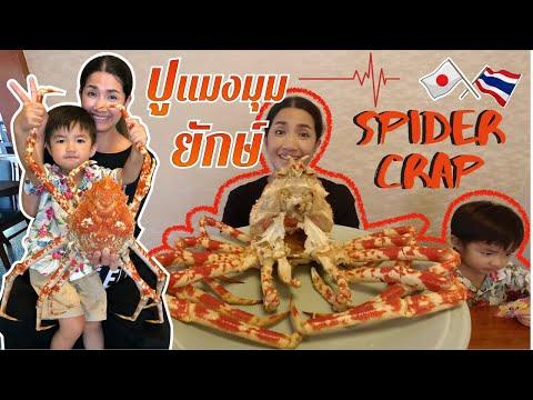 สะใภ้ญี่ปุ่น🇯🇵86 | พาแม่ย่าไปหากินปู แมงมุมยักษ์ญี่ปุ่น ทากะอาชิกานิ โคตรปูขายาวกินแล้วตัวเบาหวิว