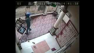 Wanita & Dokter Saat USG-Terekam CCTV
