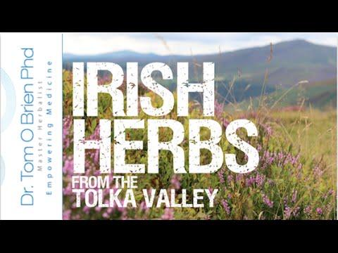 Irish Herbs, plant medicines growing in Dublin, Ireland