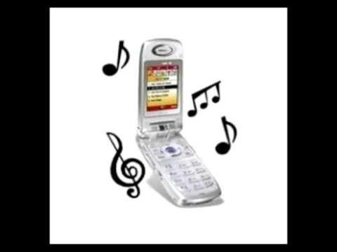 Tonos Graciosos Para Celular Contesta El Telefono Pendejo
