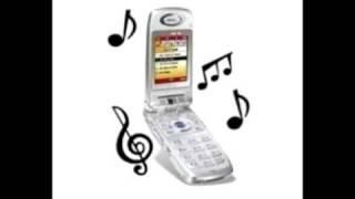 Tonos Graciosos Para Celular-Contesta el telefono pendejo