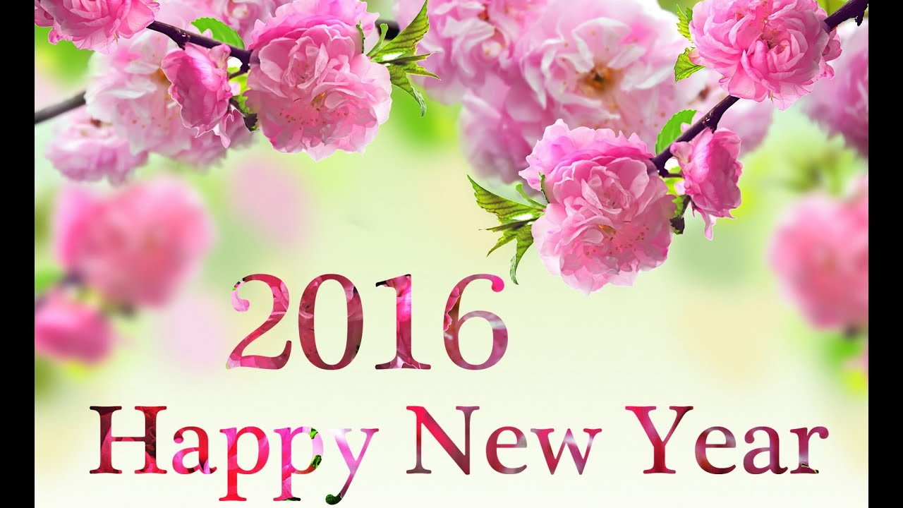 Happy New Year 2016 – Send New Year Gifts like Fresh Flowers ...