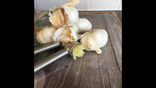 Garlic press New From Best in the world -Chef Ricardo Cooking