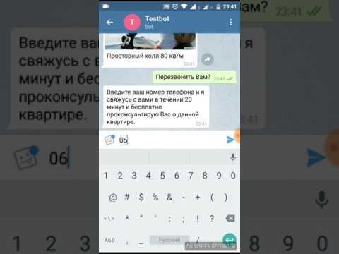 Пример Работы Чат Бота для Telegram - Andrey Kos