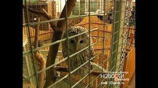 Как содержат животных в зоопарке ТК «Садовая»?