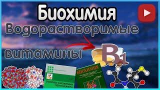 Биохимия. Лекция 12. Водорастворимые витамины. Витамин B1. Тиамин.