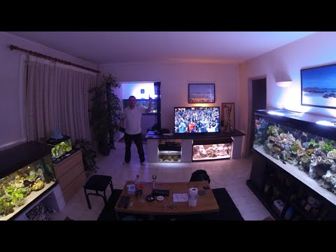 My Living Fishroom With Malawi Cichlids 500 Gallons Of Tank ! Thank U All For Likes !!!! Thank 4 Sub