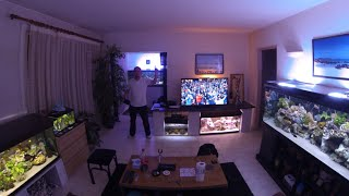 My living fishroom with Malawi cichlids 500 gallons of tank ! Like like like !!!!