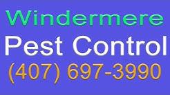 Pest Control Windermere   407-697-3990   Windermere Florida Pest Control