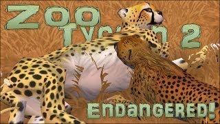Endangered! Balancing Baby Bundles! - Episode #10