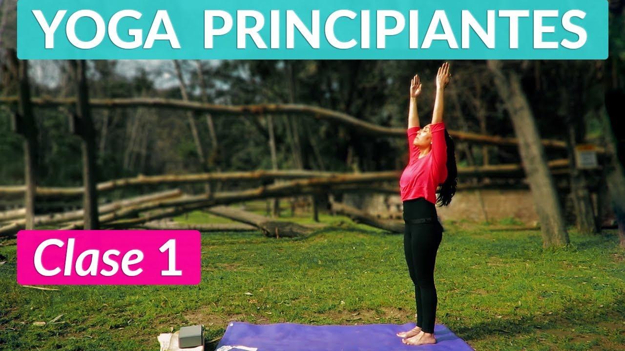 Hatha Yoga Para Principiantes Clase 1 Posturas De Pie 1 Estabilidad Youtube