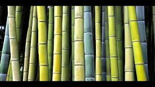 Shakuhachi - Prayer