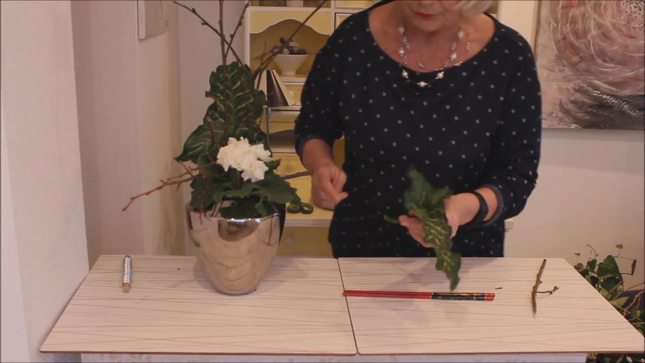 Fruhlingsdeko Primel Meet Asia Barbel Swohn Deko Ideen Youtube
