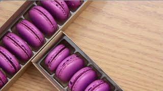 purple raspberry macaron by blanchturnip